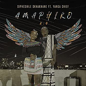 Amaphiko 2.0