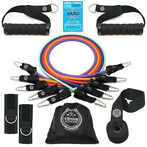 Tribe Resistance Bands Set, Exercise Bands for Working Out - Includes Stackable Workout Bands, Handles, Ankle Straps, Door Anchor, Carry Bag & Advanced eBook (Premium Accessories)