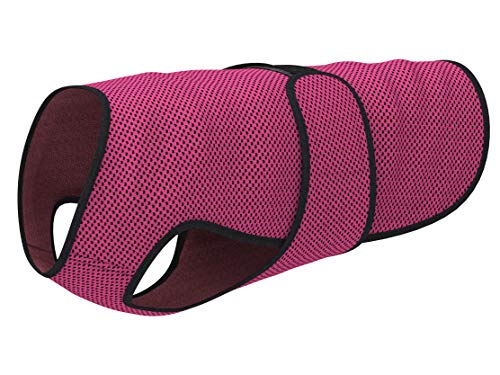 DOGZSTUFF Dog Cooling Vest. Lightweight Jacket with Evaporative Cool Microfiber Technology, UV Protection Shirt, Sizing for Small, Medium and Large Dogs (M, Rose Red)