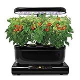 Miracle Gro AeroGarden Harvest Black avec LED et kit graines Herbes Aromatiques