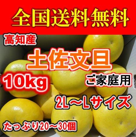 高知産土佐文旦2Lサイズ・ご家庭用10kg