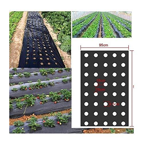 Chu GAI 1pc 5 Agujeros 0,02 Mm Negro Huerta Plantas Agrícolas Membrana De Picado Siembra De Plástico Perforada Película De Plástico (Size : 0.95x10m)