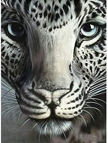 ELEVENFF DIY Ölgemälde Zeichnung mit Pinsel Malen Malen Nach Zahlen Kit für Erwachsene Dekoration Schwarz-Weiß-Leopard 40X50Cm/15,8X19.7Inch