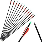 XIXILI 12 Pack Carbon Arrows 32 inch, Hunting and Target Practice...