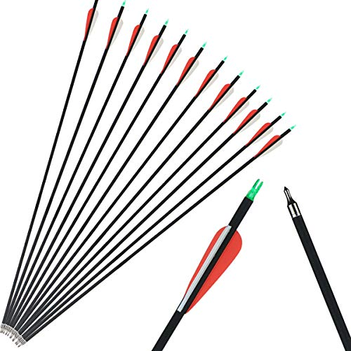XIXILI 12 Pack Carbon Arrows 32 inch, Hunting and Target Practice Arrows for Compound Bow and Recurve Bow, Spine 500 with Removable Tips (12PCS)