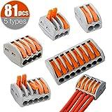 AMZANDY NEW terminales eléctricos,conectores electricos rapidos,PCT-212/213/215 Palanca Tuerca Cable Conector Kit,Conductores de Surtido Conectores de Cable Compacto (81 piezas)