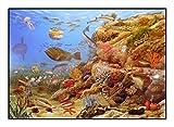 N / A James Hamilton 1000 T - Puzzle (72 x 51 cm), diseño de animales mediterráneos, tiburón, medusa, caballito de mar, pescado, coral, cangrejo Mediterráneo