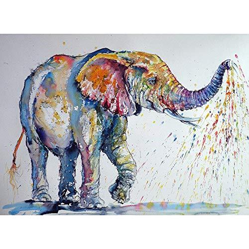Afabel DIY-Elefante Acuarela Pintar por Numeros Adultos Niños para DIY Pintura por números con Pinceles y Pinturas Decoraciones para el Hogar- sin Marco 30x45cm