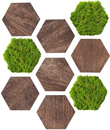 Wandpaneele aus Holz, Naturmoos HEXAGON , Holzscheiben Sechseck, Deko, 18 Stück, 15 cm x 13 cm, Wohnzimmer Dekoration