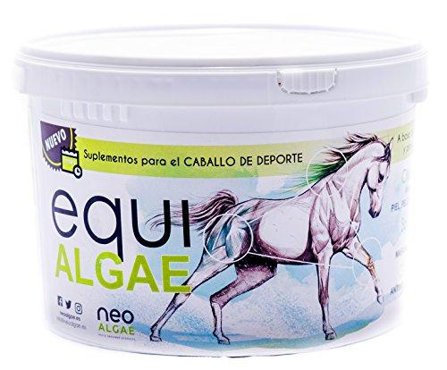 Complément alimentaire pour chevaux | Riche en vitamines A, C, D, B et biotine | Anti-inflammatoire | Composants 100% naturels: microalgues, levures et curcuma | 1,5 kg par conteneur