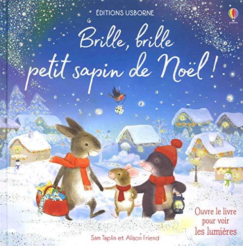 Brille, brille petit sapin de Noël !