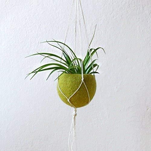 Air planter gift//Macrame hanger planter//Hanging planter//Black Felt planter//minimalist home decor//Choose your color!
