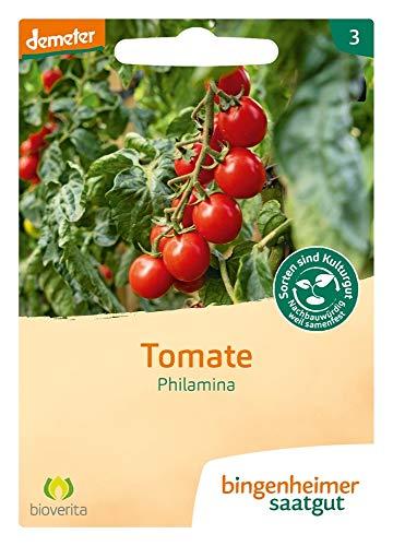 Bingenheimer Saatgut Tomate Philamina demeter bio für ca. 25 Pflanzen