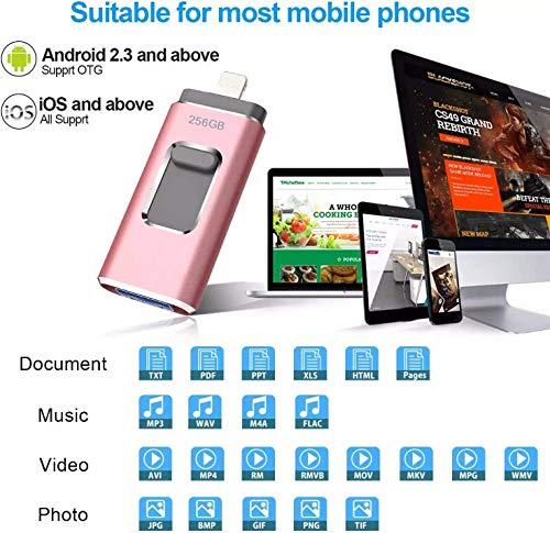 maxineer USB Stick für iPhone 256GB USB 3.0 Speicherstick Externer Speicher Speichererweiterung USB-Stick Flash Memory Drive Photo Stick für iPhone Android Laptop Tablet PC