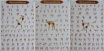 by soljo Set of 3 Muay Thai Training Moves Boxing Sport Poster 78 cm X 54 cm  New