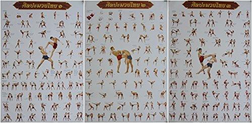 SET of 3 Muay Thai Training Moves Boxing Sport Poster 78 cm X 54 cm (New)