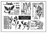 植物透明クリアシリコンスタンプ/DIYスクラップブッキング用シール/フォトアルバム装飾クリアスタンプA0317