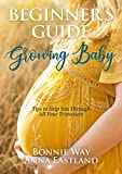 Beginner's Guide to Growing Baby: Tips to Help You through All Four Trimesters