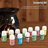 Aceite esencial no 36Pcs / set para spray