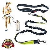 Guinzaglio per le mani, robusto, resistente e sicuro con cintura in vita regolabile e cuciture riflettenti per jogging, escursionismo, passeggiate, bicicletta, per cani di taglia media e grande
