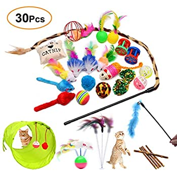 FYNIGO 30Pcs Jouet chat accessoire jouet pour chat,L'ensemble de jouets en peluche cataire comprend 2 tunnels,un bâton de plumes de chat,un bâton d'herbe à chat,une souris,une balle et une cloche