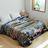 Hiyoko 79' W x 95' H Blanket, Religious Jesus's, St Jude, Korean Mink Year Round, Warm, Washable, Durable, Cashmere -Like Velvet Bed-Cover, Overhang Above Queen King Double Beds