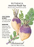 Botanical Interest - Rutabaga American Purple Top