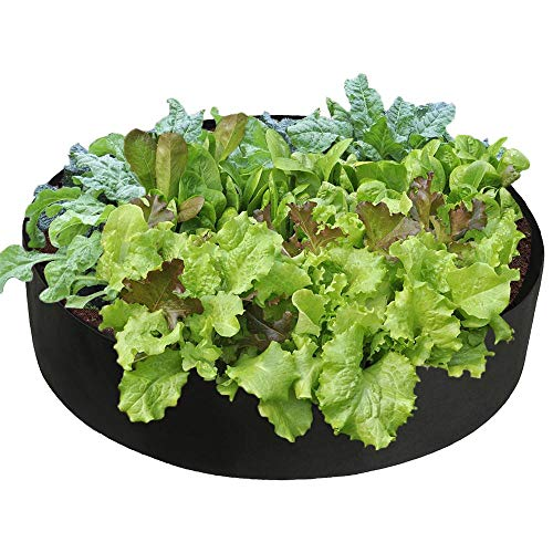 Bongba 15 Gallons Extra Large Round Raised Garden Bed, Seedling Nursery Grow Bags Planting Container Flowers Fabric Planter Pot for Plants,Vegetables,Flowers