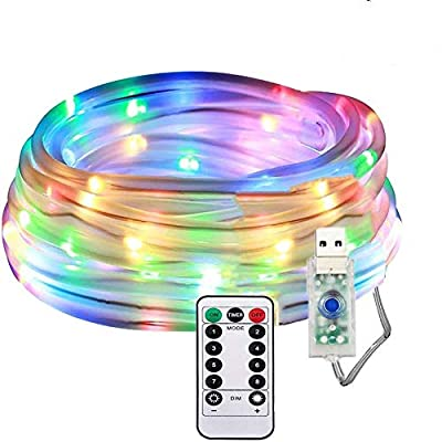 LED Fairy Rope String Lights - Liwiner USB Powered 33FT 100 LED String Light with Remote Timer 8 Mode Dimmable Strip Lights for Garden Patio Party Christmas Tree Outdoor/Indoor Decoration