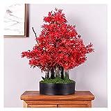 Bonsai Artificial Creative Red Maple Fake Tree Simulación Árbol Sala de estar Planta verde Potted Fallo Flor Planta Sala de estar Paisajismo Decoración de Decoración de Decoración plantas falsas