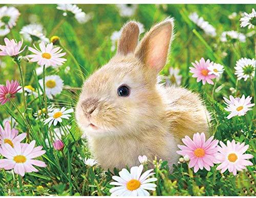 Juego educativo de rompecabezas de 1000 piezas para adultos y niños de 50 * 75 cm,Conejo en la flor 27 x 19,7 gran juego de rompecabezas ilustraciones para adolescentes que juegan en el hogar entrete