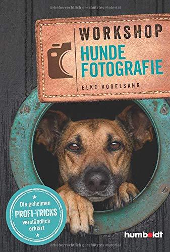 Workshop Hundefotografie: Die geheimen Profi-Tricks verständlich erklärt