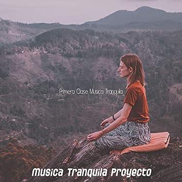 Primera Clase Musica Tranquila