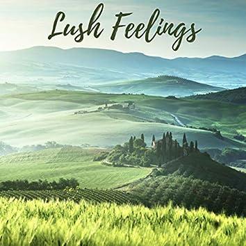 Lush Feelings