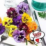 Aimado Seeds Garden-50 Pcs Pensées frisées en mélange graines vivaces fleurs comestibles Viola tricolor Fleurs Bonsai plantes