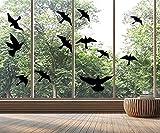 Pegatinas para ventana con diseño de siluetas y pájaros (12 siluetas de cristal)