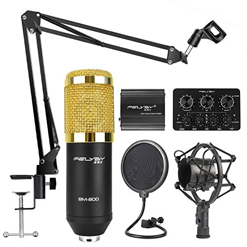 Professional BM-800 | Cardioid Condenser Microphone Set with 6 Basic Accessories and A Mixer Sound Card,Luxury Kit (BM 800 black)