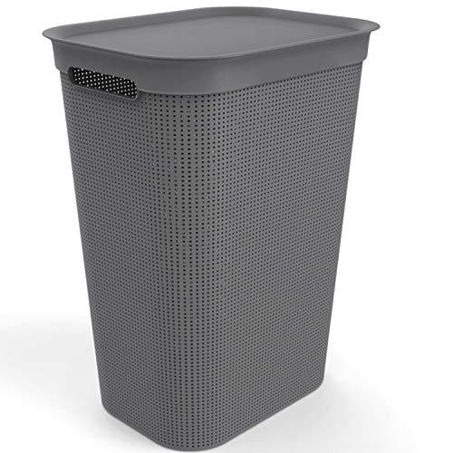 Rotho Brisen Waschesammler 50l mit Deckel und 2 Griffen, Kunststoff (PP) BPA-frei, anthrazit, 50l (43,1 x 34,0 x 52,9 cm)