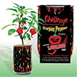 (Set of 3) Grow the Worlds Hottest Peppers at Home! DIY Kits by Challenge