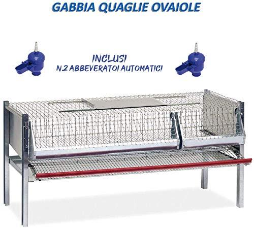 Motisi Zootecnici Gabbia per quaglie Modello per ovaiole