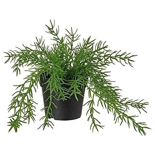 IKEA FEJKA - Planta artificial en maceta, decoración interior y exterior, diseño de muérdago de cactus de 9 cm