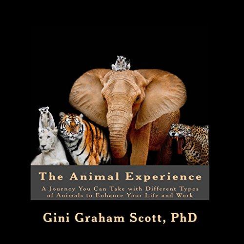 Animal Experience Titelbild