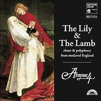 リリー&ラム [Import] (LILY & THE LAMB|LILY & THE LAMB)