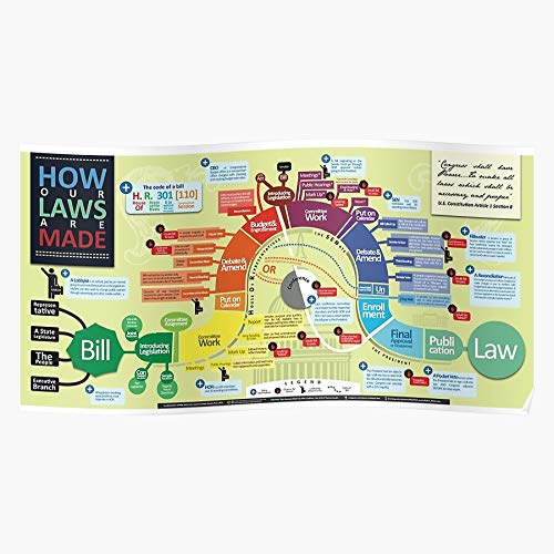 Bill Congress Government Studies Infographic Education Wirth Social Law Home Decor Wandkunst drucken Poster !