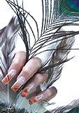 A4N Nagelstudio Naildesign Poster Pfau A2 60x40cm dekorieren Sie Ihr Nagelstudio mit tollen design Poster