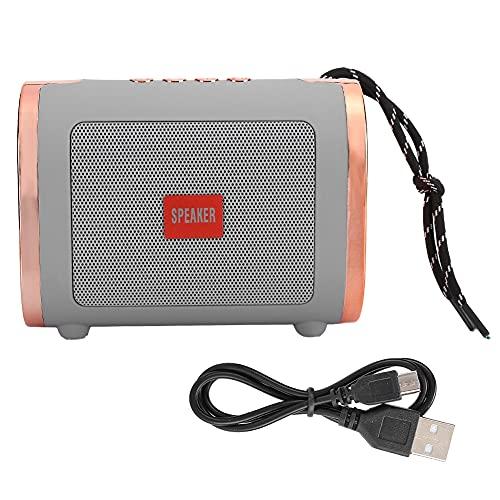 Altavoz Wear- Net Altavoz inalámbrico Mini USB Flash Disk Soporte Bluetooth/Tarjeta de memoria/U Disco/FM/Llamada telefónica (gris plateado, tipo torre inclinada)
