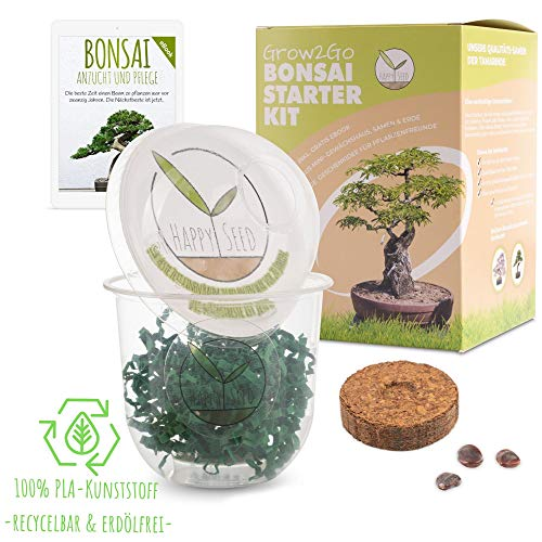 GROW2GO Bonsai Kit incl. eBook GRATUITO - Set con mini invernadero, semillas y...