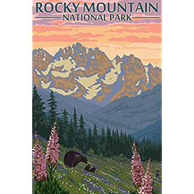 Rocky Mountain National Park, Colorado - Bear and Cubs with Flowers (16x24 Giclee Gallery Print, Wall Decor Travel Poster)