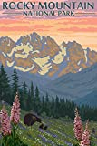 Rocky Mountain National Park, Colorado, Bear and Cubs with Flowers (12x18 Art Print, Wall Decor Travel Poster)