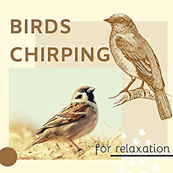 Birds Chirping for Relaxation CD